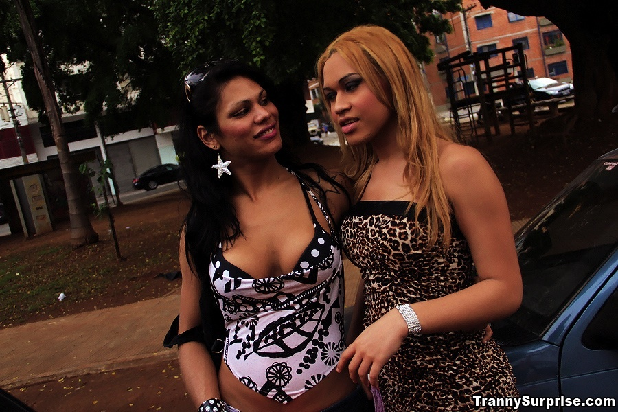 2 Super Arousing Trannys Get Their Incredible Brazilian Bodies Fucke