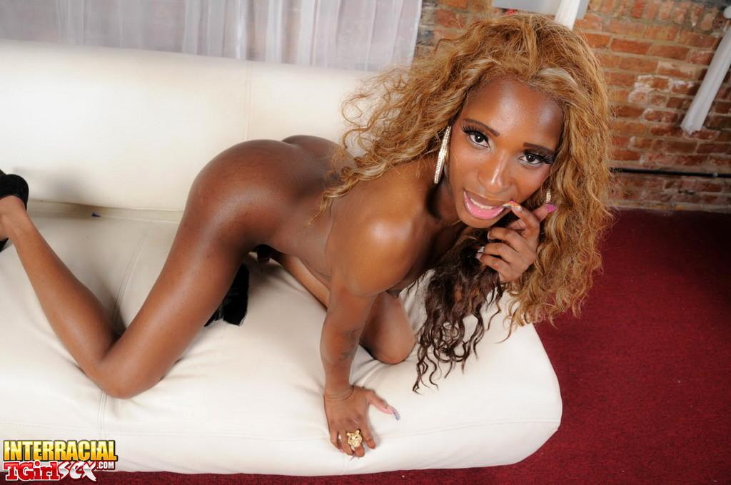 Black Beauty Ariel Poses Strokes