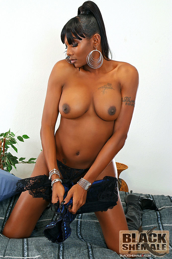 Black TGirl Jerks Her Dick