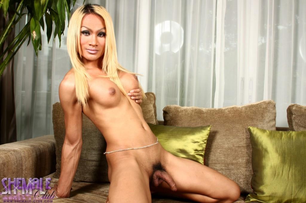 Busty Blonde Tranny Pamela Posing