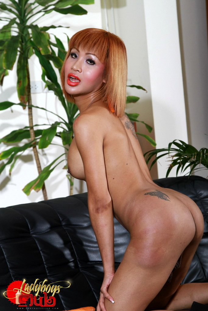Exotic Hottie Tanya Bang's A Carrot