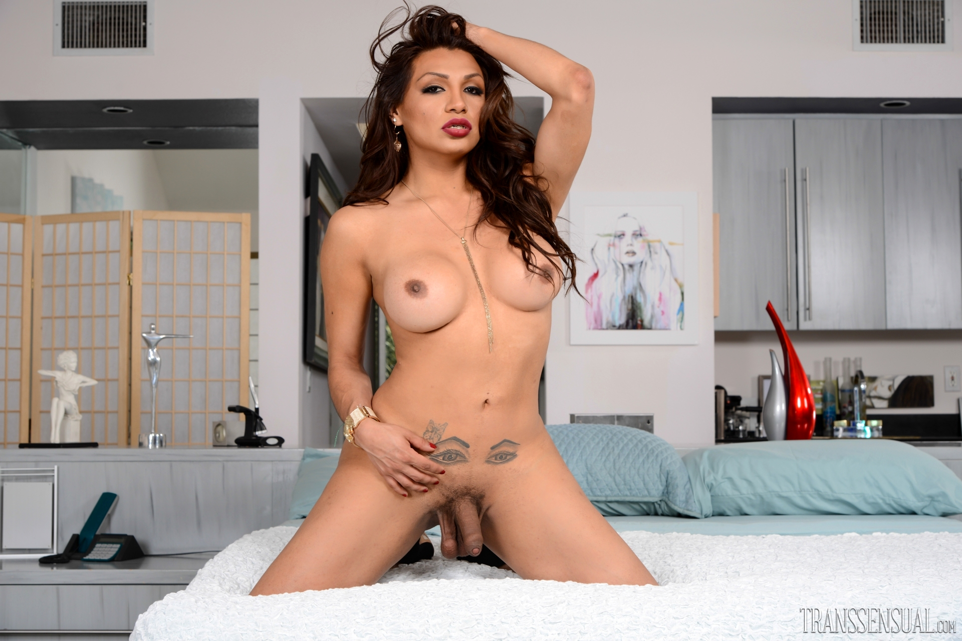 Feisty T-Girl Latina