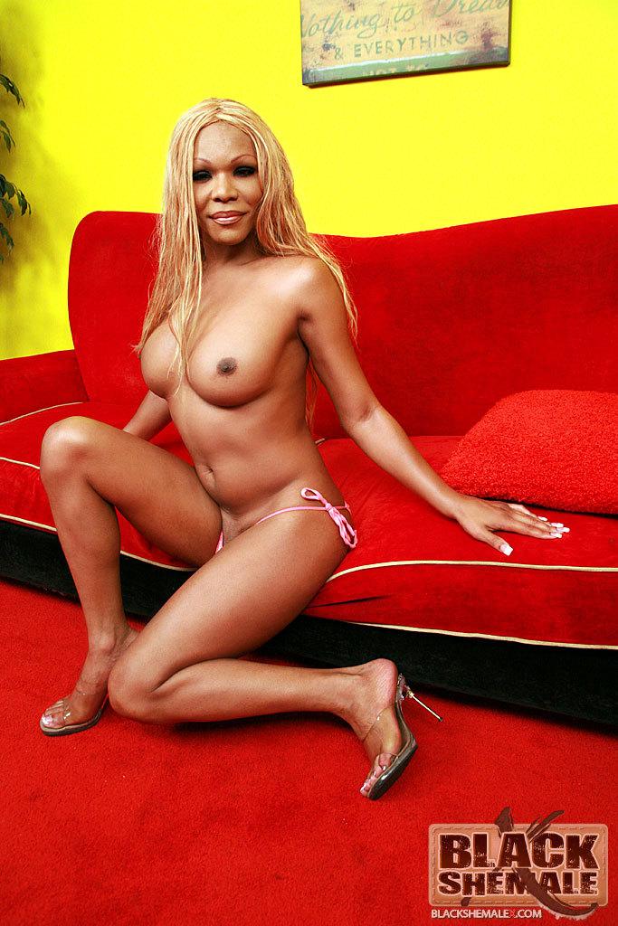 Hung Black Femboy Rubs Her Dick