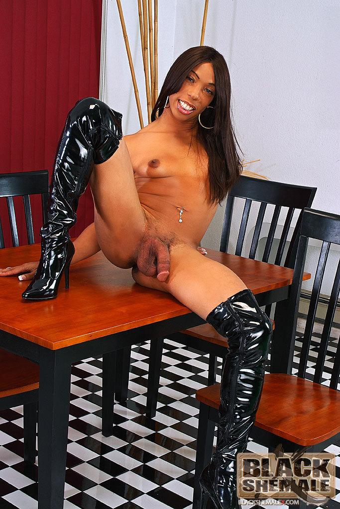 Hung Black Tgirl Babe Asia