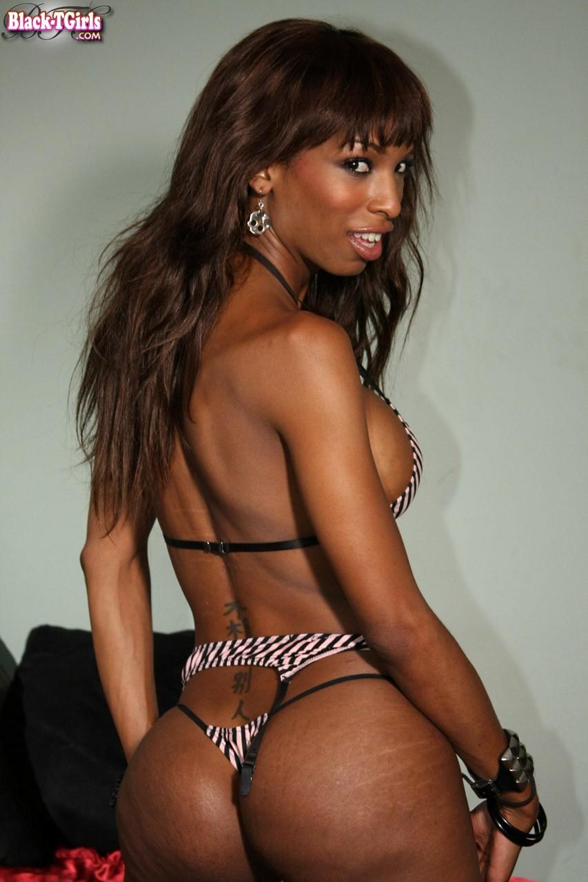 Ladyboy Pornstar Natassia Fantasies Performs A Inviting Stript