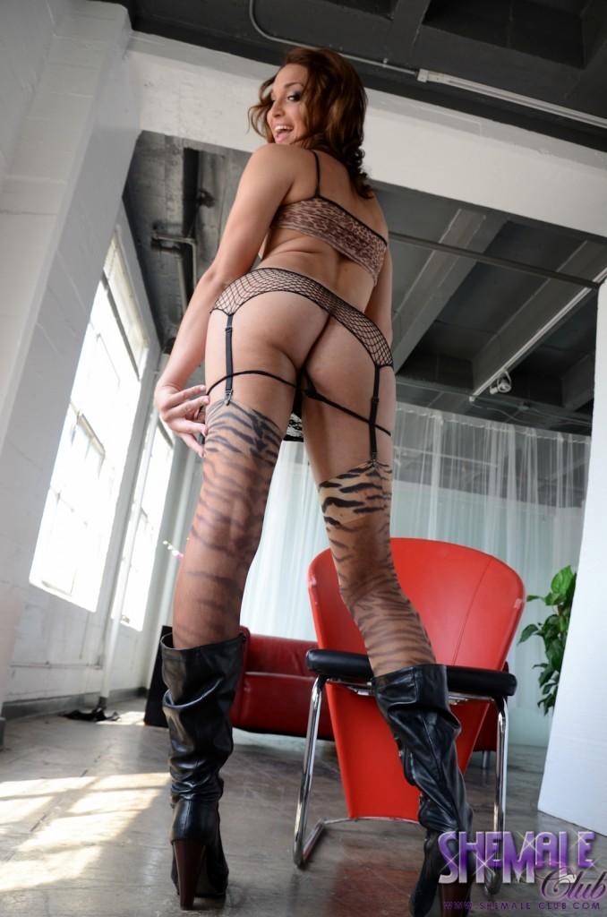Perfect Transsexual Jonelle Brooks Posing