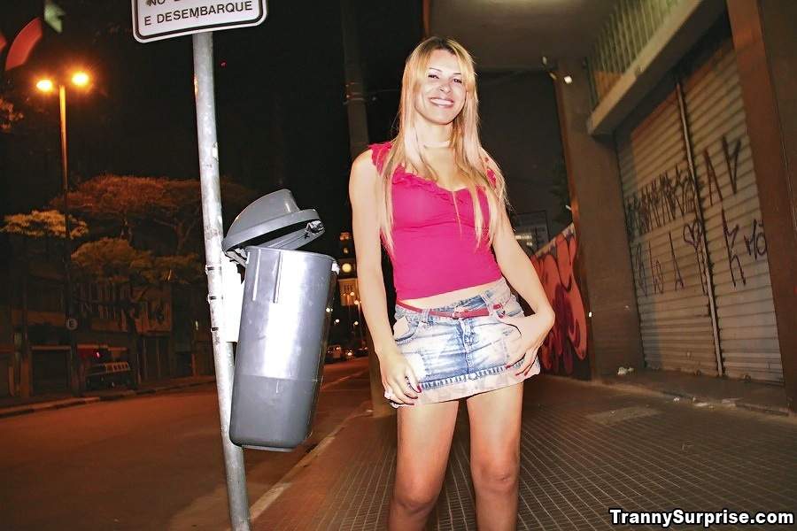 Real Yummy Tgirl Picked Up In Brazil And Smashed On The Street