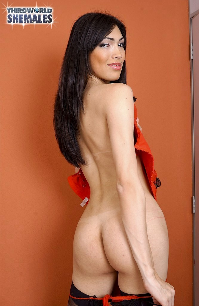 Sandy Lopes Is Our Very Perfect Shemale In Training Cover Girl
