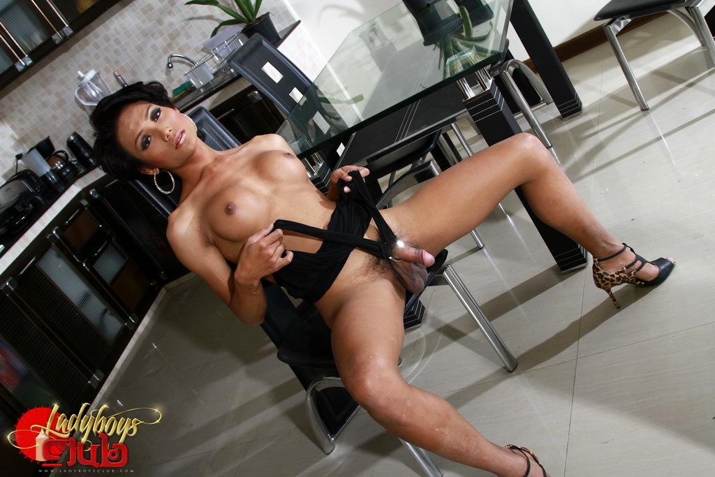 Super Beautiful TGirl Sonya Strips Poses