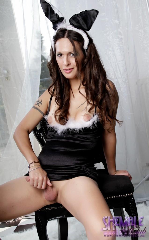 Super Seductive Ts Nikki Posing Her Awesome Penis