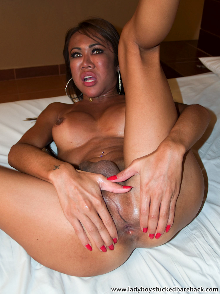 TGirl Tum Jizzes As No Condom Tool Enters Her Butt
