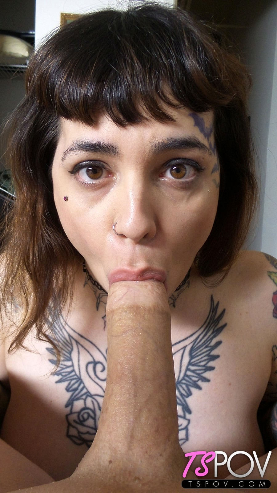 Trixxy Von Tease Is A Sultry Suggestive Babe That Enjoys Cocks.