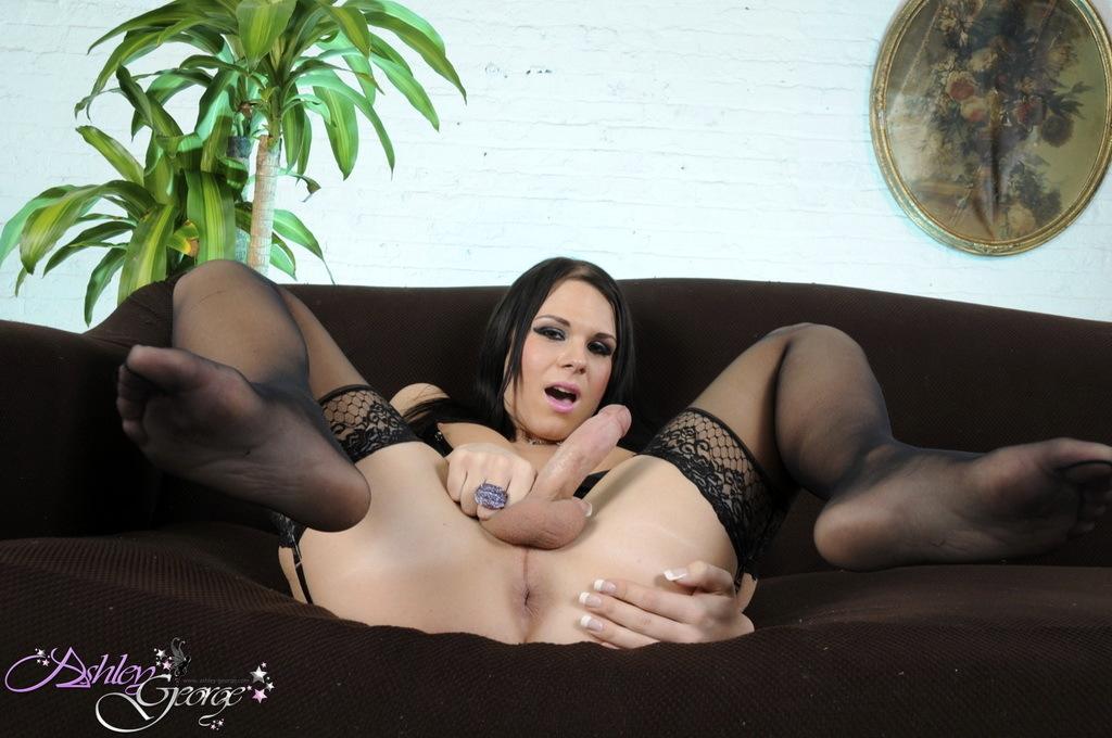 TS Ashley Posing Her Massive Rough Dick In Beautiful Corset