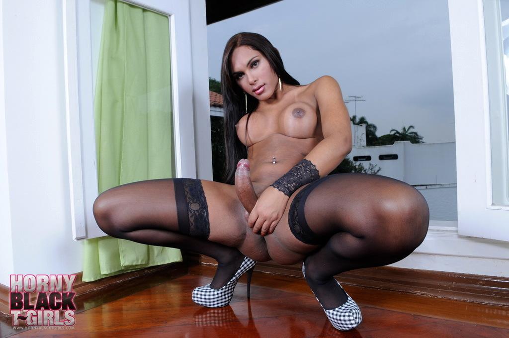 Yummy Black TS Beatriz Shows Us Her Massive Penis